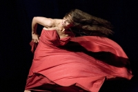 PinaBausch_BambooBlues_ClémentineDeluy